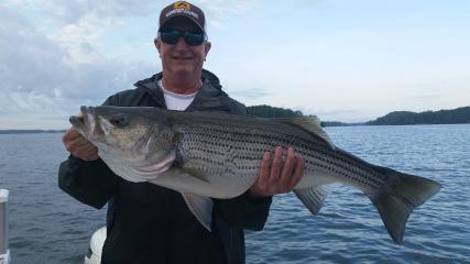 Striped Bass Fishing in Lake Lanier