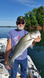 April Lake Lanier Striper Fishing