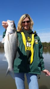 Lake Lanier Striped Bass Fishing