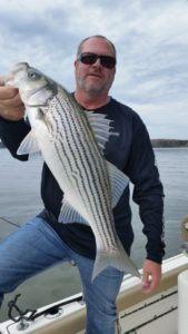 Nice Lanier Striped Bass