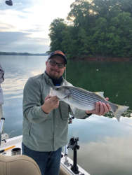Striper Fishing Lake Lanier