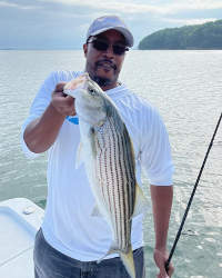 Corporate Fishing for Lake Lanier Striper