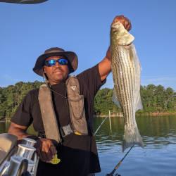Lake Lanier Striper Fishing